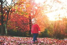 18 Month photos, girl, fall, leaves
