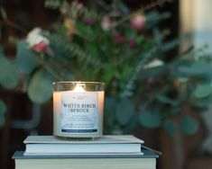 White Birch + Spruce symbolizes hope + resilience so this has been burning nonstop in my home lately 😀 find out more about transformative fragrance on our blog. . #woodenwick #woodenwickcandles #homescents #luxuryscents #homeaccessory #homefragrances #handmadecandles #scentedcandle #homefragrance #naturalcandles #candlelover #scentedsoycandle #handmadecandles #usamade #candleaddiction #cleaningredients #luxurycandles Natural Candles, Soy Candles, Candle Jars, Home Scents, Home Fragrances, Luxury Candles, Handmade Candles, Earthy, Aromatherapy