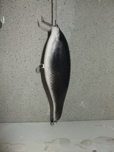 Learn How to Make Fishing Lures here at this Lure Making Blog.You will find Lure Making Projects and Articles to help you Make Your own Fishing Lures.