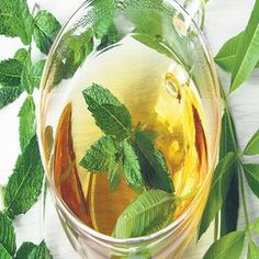 Health Benefits of Mint  Helps Digestion and Cures Stomach Upset  Prevents Headaches  Helps in Skin Care and Prevents Pimples  Helps in Prevention of Asthma and Cough