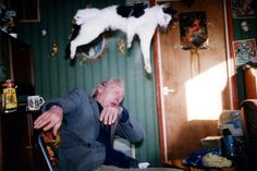 Richard Billingham Untitled (RAL Born in Cradley Heath, West Midlands Lives and works in Sawnsea, Wales. Fuji long-life colour print on aluminium 105 x 158 cm Untitled (RAL William Eggleston, Chef D Oeuvre, Oeuvre D'art, I Love Cats, Crazy Cats, Richard Billingham, Richard Misrach, Saatchi Gallery, Galleries In London