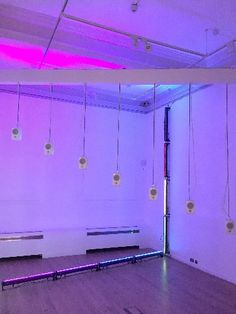 Second Display of ALIVE: Art Between Life and Science Goes On Show at York Art Gallery York Art Gallery, York Museum, Ceramic Art, Museums, Trust, Neon Signs, Science, Display, Life
