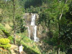 www.williamtoursandtravelsrilanka.com Nuwara eliya Sri lanka. William tours Negombo
