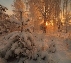 I Love Winter, Winter Time, Fantasias Halloween, Winter Scenery, Nature Aesthetic, Christmas Mood, Simple Christmas, Christmas Nails, Xmas