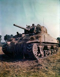 """1944, France, Vaucelles, Un char canadien M4 """"Sherman"""" dans un champ près du village"""