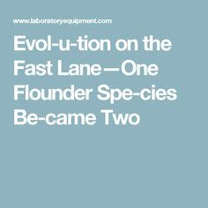 Evol­u­tion on the Fast Lane—One Flounder Spe­cies Be­came Two