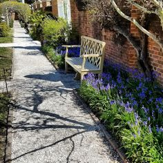 Aha! A free bench at the Governors Palace for whomever would like to enjoy the flowers and sun.  #colonialwilliamsburg #virginia #thedogstreetpatriot #loveva #spring #springflowers #garden #18thcentury #colonialamerica #bench #beautiful #oystershellpath by the_dog_street_patriot