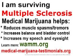 Marijuana extracts, taken orally, significant reduce muscle stiffness, pain and spasticity in patients with multiple sclerosis (MS), according to new clinical trial data published in the Journal of Neurology, Neurosurgery & Psychiatry.