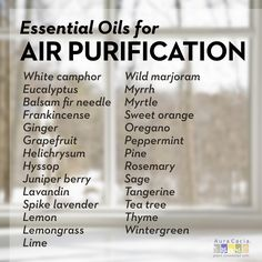 essential oils with air-purifying or cleansing benefits