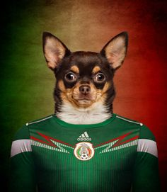 Soccer Nation Dogs Mexico - Chihuahua