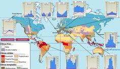Infografía interactiva. Descubre la distribución de los diferentes tipos de clima que existen en el planeta Tierra.
