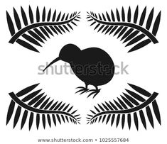 Find Kiwi Ferns Symbols New Zealand Illustration stock images in HD and millions of other royalty-free stock photos, illustrations and vectors in the Shutterstock collection. Thousands of new, high-quality pictures added every day. New Zealand Symbols, Nz History, Silver Fern, Ferns, New Pictures, Royalty Free Photos, Kiwi, Stencils, Illustration