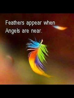 Feathers are special to me. She love feathers and feathers were around us when she was here. Now that she's not and I see feathers I know she's with me. Just like butterflies