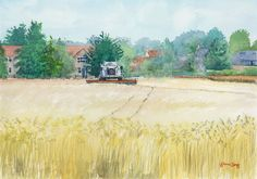 Harvesting at Lordship Farm, Swaffham Bulbeck