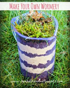 "Make Your Own Wormery with ""Superworm"" & Discover 8 Amazing Worm Facts! - Take one fantastic picture book, add a science experiment, & go digging in the dirt & you have one - Forest School Activities, Eyfs Activities, Outdoor Activities For Kids, Outdoor Learning, Spring Activities, Worm Facts, Minibeasts Eyfs, Make Your Own, Make It Yourself"