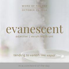 The #wordoftheday is evanescent. #merriamwebster #dictionary #language