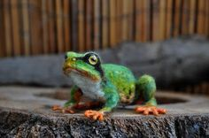 Needle Felted  Silky Frog-Tree Frog Reserved for door darialvovsky: