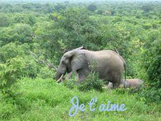Côte d'Ivoire FRENCH Je t'aime