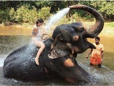 Talk about breathtaking adventures! While 83 might seem like an impossible number, consider adding at least one of these places to your travel bucket list. Unlocking the Door to Your Future! Animal Photography, Travel Photography, Elephant Love, Elephant Shower, Elephant Art, Photography For Beginners, Bali Travel, Beautiful Creatures, Adventure Travel