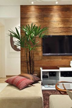 paneling behind the tv
