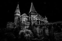 hunedoara castle - Google Search