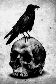 Raven and Skull Totally Edgar Allan Poe C: Corvo Tattoo, Rabe Tattoo, Art Noir, Totenkopf Tattoos, Arte Obscura, Raven Art, Bild Tattoos, Crows Ravens, Arte Horror