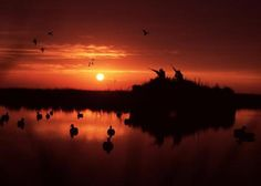 There is nothing that beats a beautiful sunrise from a duck blind. The light shining on the floating decoys and silence from the outside world. I enjoy many early mornings in the duck blind. Others may enjoy the natural beauty and silence a duck blind has to offer.