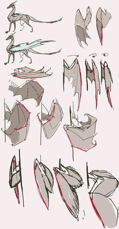 _folded_wings_reference_part2_by_remarin-d7og68x.png (1024×1963)
