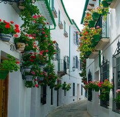 Eight beautiful villages in Andalusia to discover the next spring Beach Bitch Andalucia Spain, Andalusia, Spanish Haciendas, Deck Planters, Spring Landscape, Wild Spirit, Malaga, Perfect Place, Beautiful Places