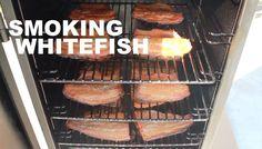 How to Smoke Whitefish #howto #smokedfish #whitefish #brine #smoking #smokedmeats #smokedmeat #fish #saltedfish #frozenfish #tips #information #tutorial