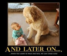 Training a child up right! Dog style . . .