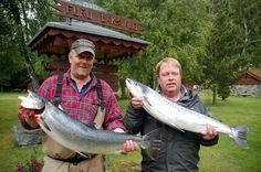 Hestneset: Kjell Joar Grimsruid (tv) og Knut Barnevik med hver sin laks på henholdsvis 7,8 og 6,5 kilo, begge tatt på Hestneset 21. juni. (Foto: Jan Ødegård)
