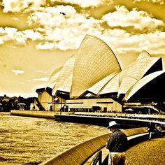 One golden day in Sydney...