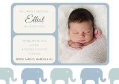 Elefant Grenze Foto Geburtsanzeige junge Mädchen von jaebirddesign, $10.50