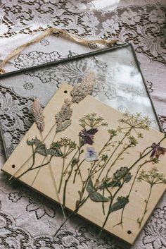 98 Best Framed Flower Pressing Images Flower Frame Dried Flowers