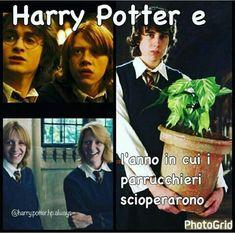 Sei un fangirl/fanboy? Divergent, Harry Potter e Hunger Games per te … # Casuale # amreading # books # wattpad Harry Potter Tumblr, Harry Potter Anime, Harry Potter Pictures, Harry Potter Facts, Harry Potter Quotes, Harry Potter Books, Harry Potter Love, Harry Potter Fandom, Harry Potter World