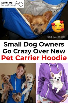 Roodie - Pet Carrier Hoodies - OMG! SO CUTE! I'll take my dog everywhere! www.roodiewear.com Teacup Poodle Puppies, Tea Cup Poodle, Doggy House, Pet Dogs, Dog Cat, Pet Carriers, Babies Stuff, Diy Dog, Dog Owners
