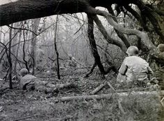 SOLDIERS CROUCHING IN THE HUERTGEN FOREST