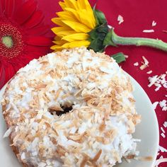 June 4, 2016 (Saturday): COCONUT w/TOASTED COCONUT #vegan doughnuts. Vegan Doughnuts, June 4th, Toasted Coconut, Bagel, Desserts, Food, Postres, Deserts, Hoods