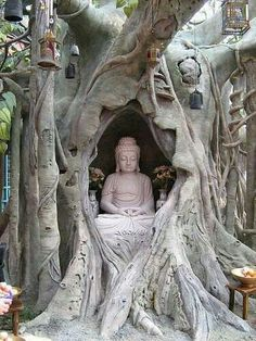"Buddha in Bodhi Tree. ""When we resist change, it's called suffering. But when we can completely let go and not struggle against it, when we can embrace the groundlessness of our situation and relax into it's dynamic quality, that's called enlightenment"""