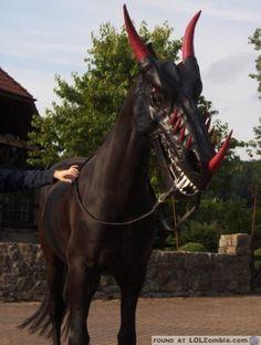 Halloween Dragon Mask for Horses. Horse Halloween Costumes, Halloween Games Adults, Animal Costumes, Pet Costumes, Costumes For Horses, Halloween Party, Vampire Costumes, Scary Halloween, Costume Ideas