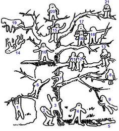 Test: Kde na stromě jste? | ProNáladu.cz