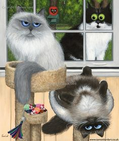 'Three Fabulous Fur Kids' A commissioned painting by Tamsin Lord Cool Cats, I Love Cats, Siamese Cats, Cats And Kittens, Art Mignon, Cat Character, Cat Colors, Beautiful Cats, Cat Art