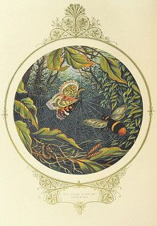 Image taken from page 34 of 'Fairy Mary's Dream. By A. F. L. With illustrations by the Author' | by The British Library