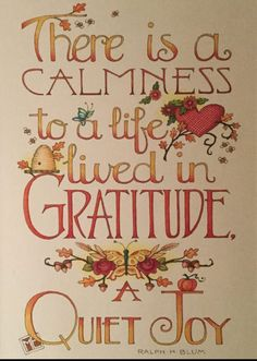 Gratitude and Quiet Joy Cool Words, Wise Words, Great Quotes, Inspirational Quotes, Crazy Quotes, Motivational, Life Quotes, La Compassion, Mary Engelbreit