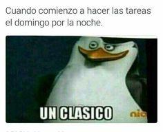 En la madrugada del lunes... Un clásico Very Funny Memes, Funny Spanish Memes, English Memes, Haha Funny, Jw Funny, Jw Humor, Dead Memes, Funny Times, Funny Wallpapers