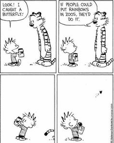 Rainbows in zoos. From Calvin and Hobbes.