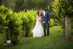467 Best Weddings at Greenbrier Farms images in 2017
