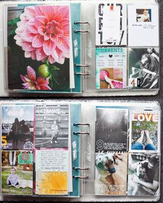 Project Life by Tina Azmus love the outline lettering over the flower