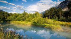 Le bois de Finges fait partie d'un parc naturel. C'est aussi une des dernières grandes forêts de pins d'Europe. Situé entre Loèche et Sierre, il abrite d'innombrables espèces animales et végétales. http://www.myswitzerland.com/fr/pfynwald-excursion-dans-les-parcs-naturels.html